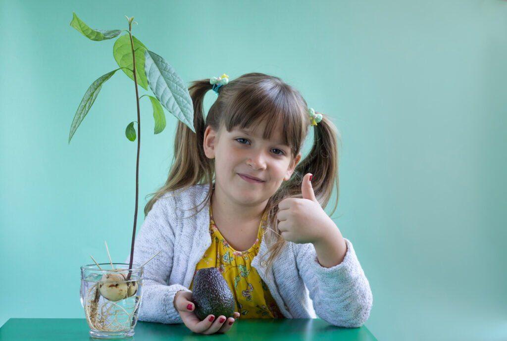 La importancia de incluir el aguacate en tu dieta y en la de de tus hijos